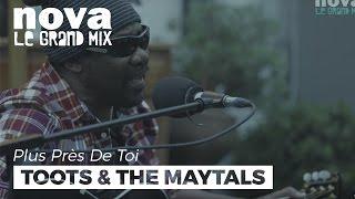 Toots and the Maytals - Bam Bam | Live Plus Près De Toi
