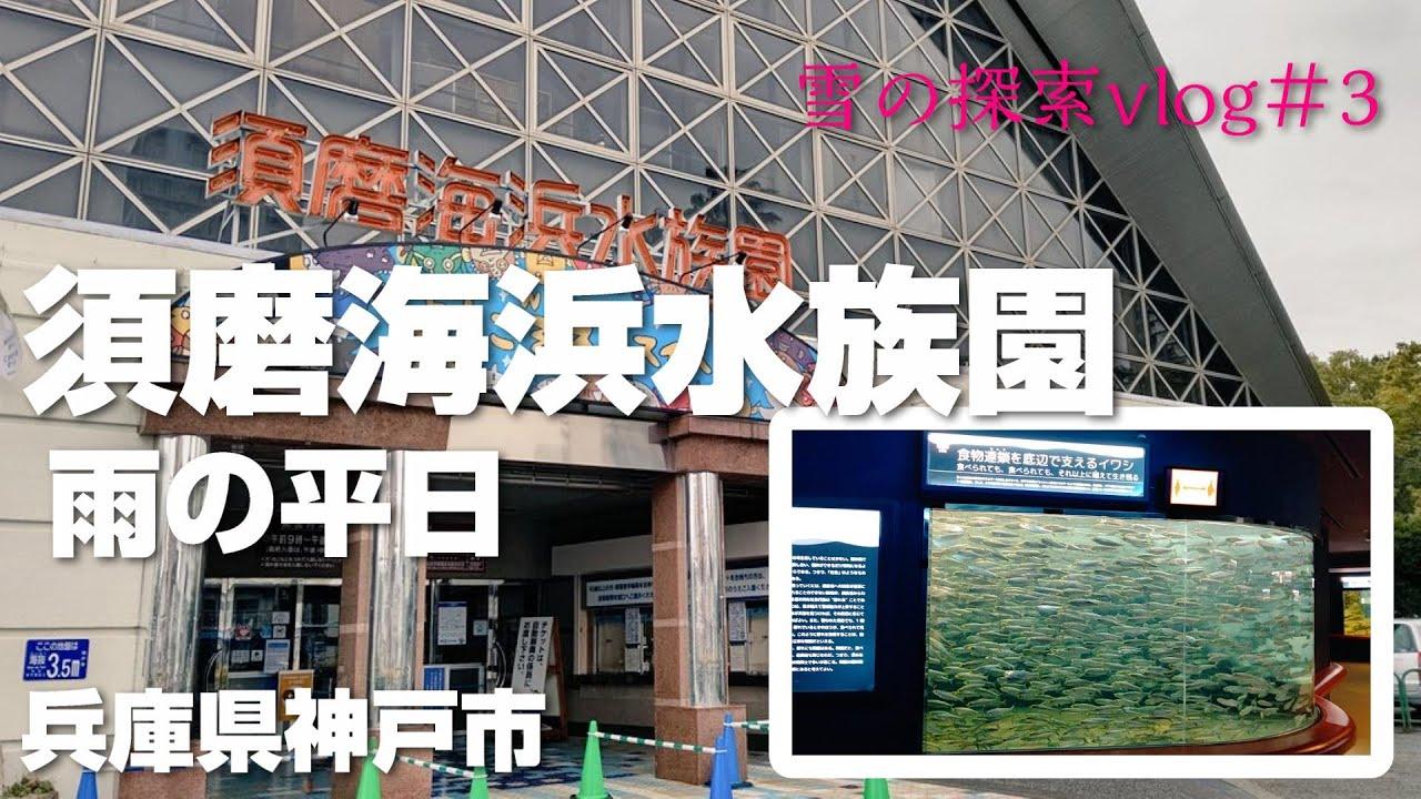 須磨 水族館 リニューアル
