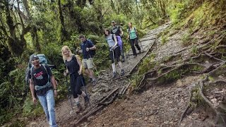 Mount Kilimanjaro with G Adventures: Day 1