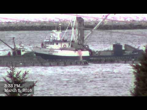 Cooke Aquaculture using Nova Scotia's harbours as a dump.