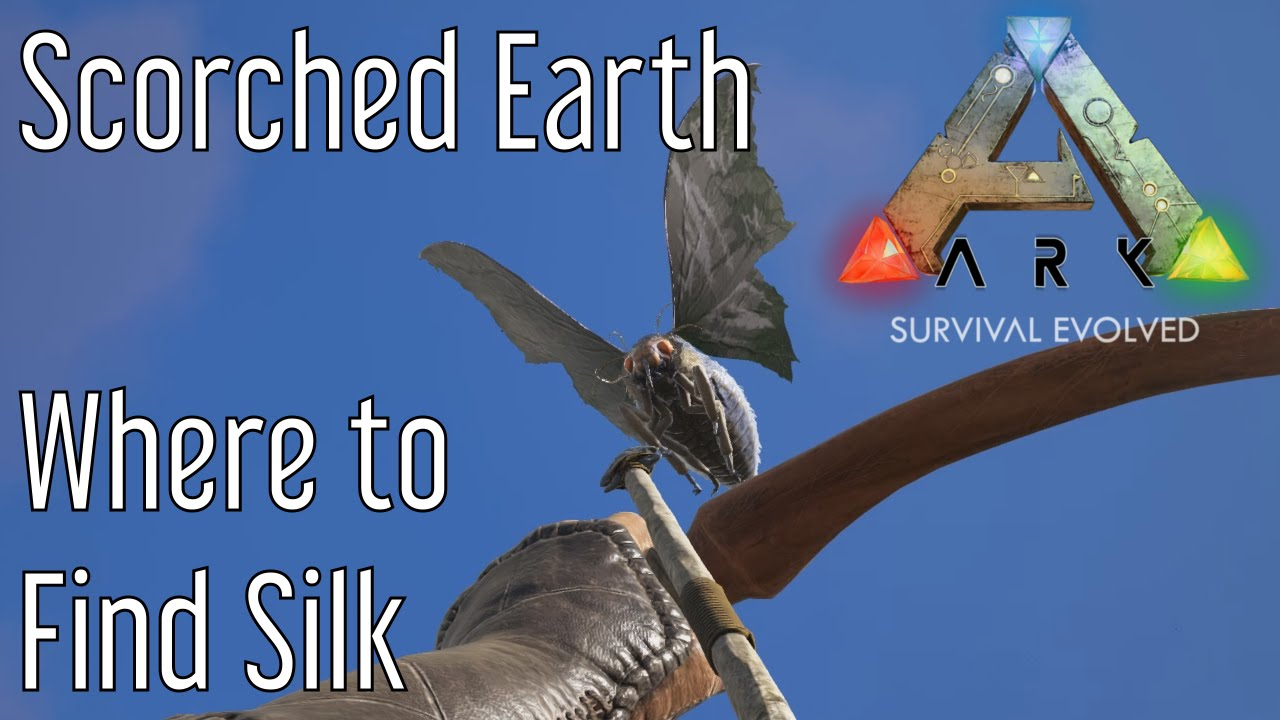 how to find ebaver ark