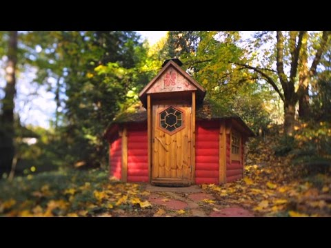 Treehouse Masters - Treehive Beehive
