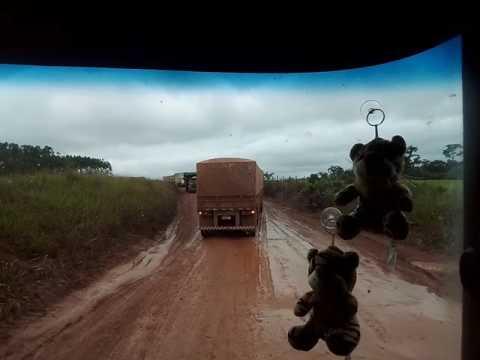Divisa de Estados .Mato Grosso e Pará