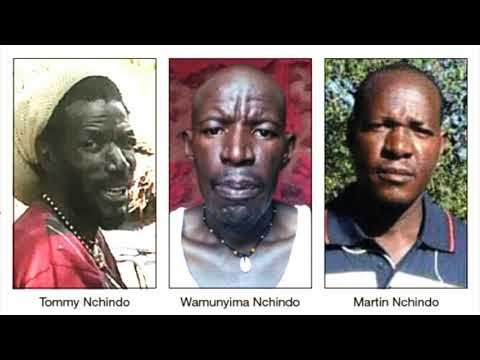 Namibian Lives Matter Movement seeks public release of report into the killing of Nchindo brothers