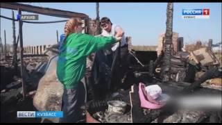 В Кемерове обсуждают проблему бродячих собак