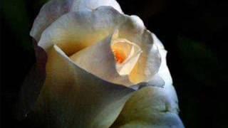 Maniacs - The White Rose (ORIGINAL VIDEO)