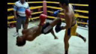 Muay Thai Destruction