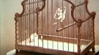 Hitlers Traum von Micky Maus – Zeichentrick unterm Hakenkreuz