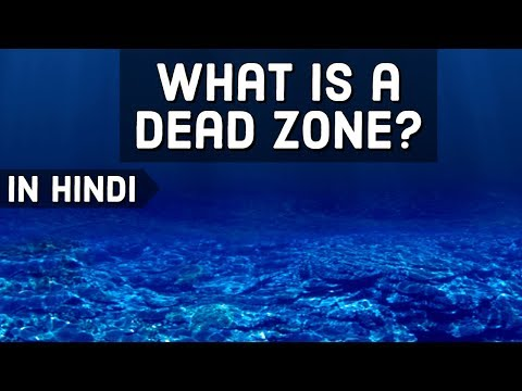 What is Dead Zone in Ocean? Low oxygen killing marine life ऑक्सीजन स्तर का पतन Current Affairs 2018