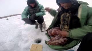 """трейлер к фильму """"весенняя рыбалка на озере Кандрыкуль"""""""