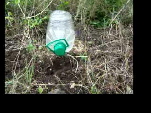 Riego por goteo gratis con botellas recicladas youtube - Tubo riego por goteo ...