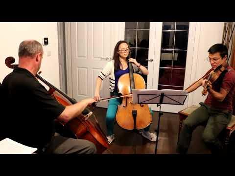 Barbers Adagio for Strings: 2 Cellos & 1 Violin Rehearsal