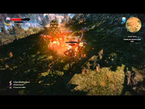 witcher 3 how to kill harrisi
