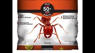 How To Get Rid Of Fire Ants Cheap And Easy