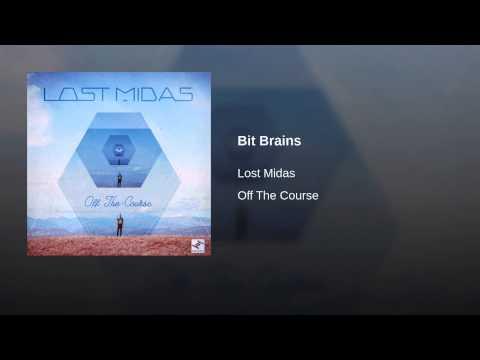 Bit Brains