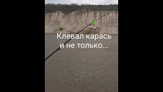 Рыбалка на ДОНУ 1 мая КЛЕВАЛ КАРАСЬ И НЕ ТОЛЬКО По весне на Дону 2021