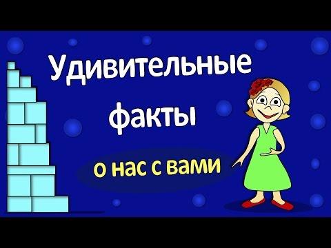 ИНТЕРЕСНЫЕ ФАКТЫ  о нас с вами !!!
