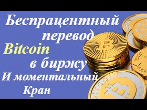 Моментальная выплата биткоины как перевести деньги на биткоин кошелек