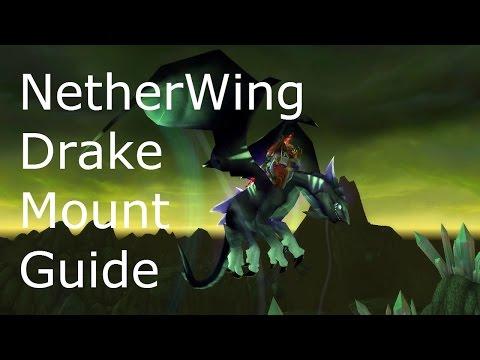 Netherwing Drake Guide