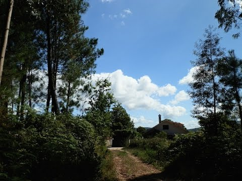 Cossourado Torre da Silva
