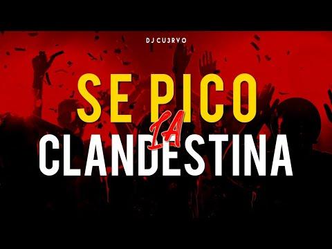 Download •🔥 SE PICO LA CLANDESTINA 5 🔥• | ALTA JODA | FIESTA 2021 | LO MEJOR | - DJ Cu3rvo