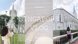 VLOG #2 SINGAPORE | 环球影城 | 好吃的肉骨茶 | 圣诞集市 | 狮城的夜景