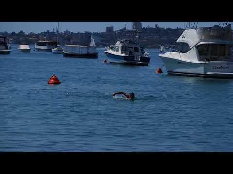 my swimming at balmoral beach