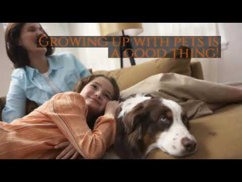Harrison Security Services, LLC- The Benefits Of Growing Up With Pets