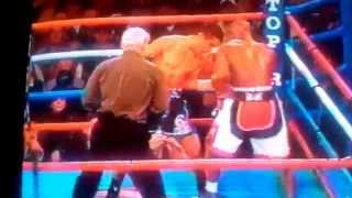 Mayweather 8 count