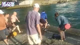 Матильда упала в реку