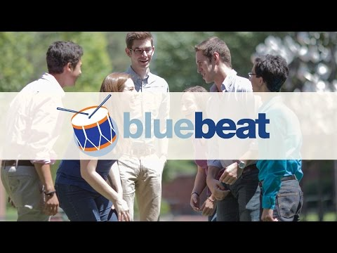 Team Building Activities In Action | Activity and Programme Videos | BlueSky Experiences