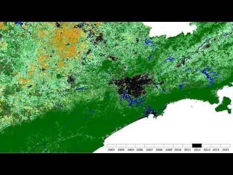 Land Cover animation over Sao Paulo (Brazil)