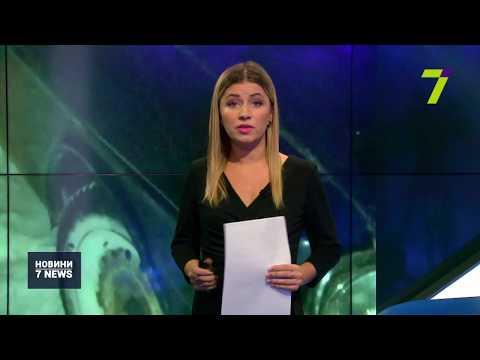 Новости 7 канал Одесса: Водій, який наїхав на неповнолітніх у Любашівському районі, повісився