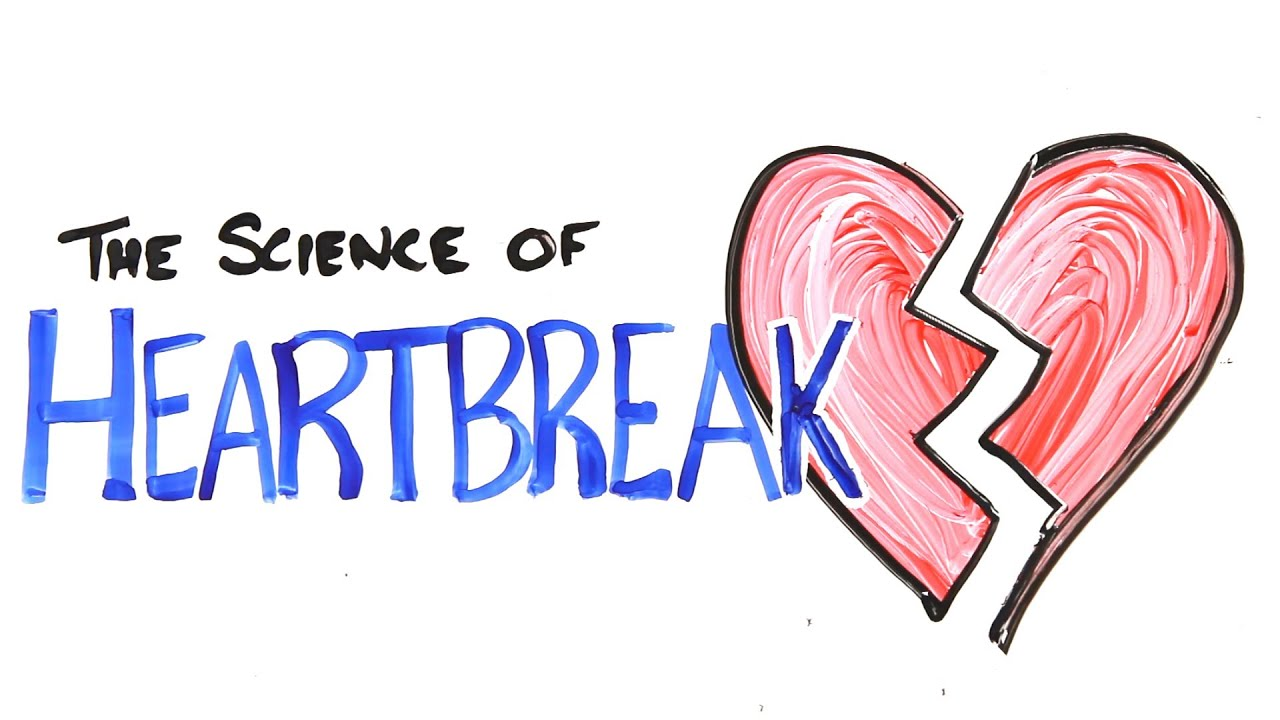 The Science Of Heartbreak Youtube