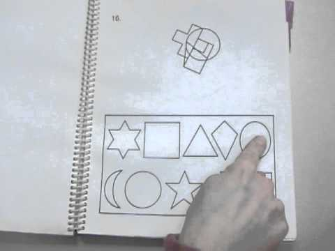 PRUEBA PDF FROSTIG DE