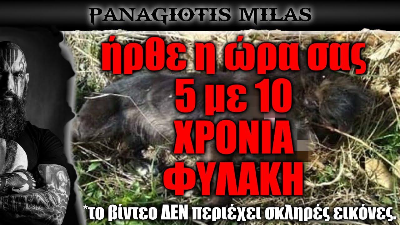 Κρήτη: Πυροβόλησε και σκότωσε σκύλο - συνελήφθει - τον περιμένουν 5 με 10 χρόνια φυλακή!