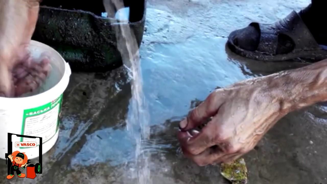 Как отмыть мазут с котами
