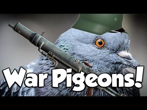 WAR PIGEONS! Battlefield 1 War Pigeons
