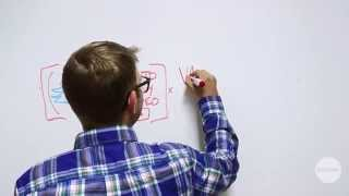 Whiteboard Wednesday: Autoplay gone wrong l Digiday