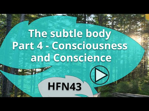 The Subtle Body: Part 4 | Consciousness and Conscience