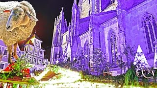 4K Germany Reutlingen Christmas 2015 Weihnachtsmarkt & Schafe – Рождество с овцами. LX100.