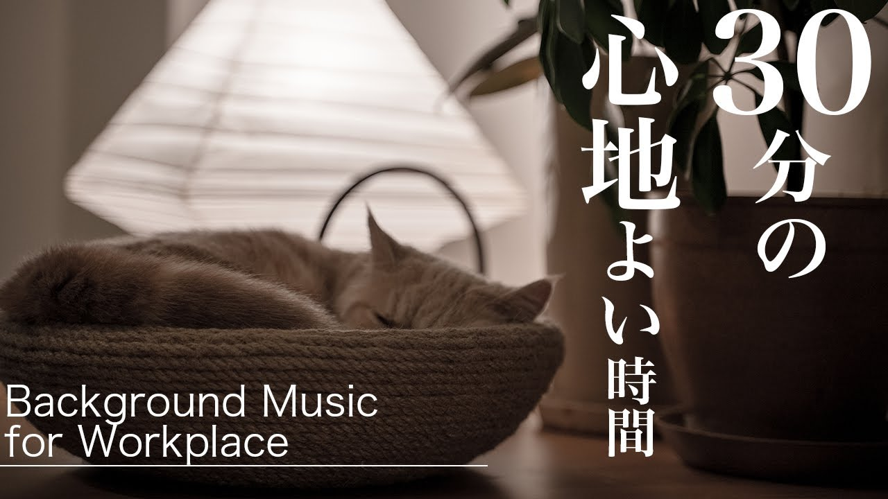 【作業用BGM】愛猫Booと1曲30分ループ/Background Music for Workplace