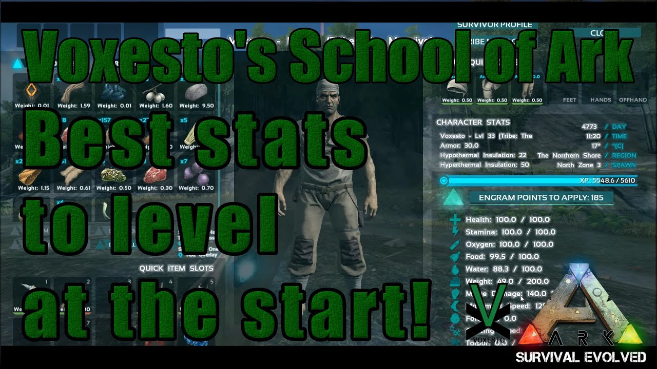 Perfect Ark: Survival Evolved. Voxestou0027s School Of Ark: Best Stats To Level At The  Start!