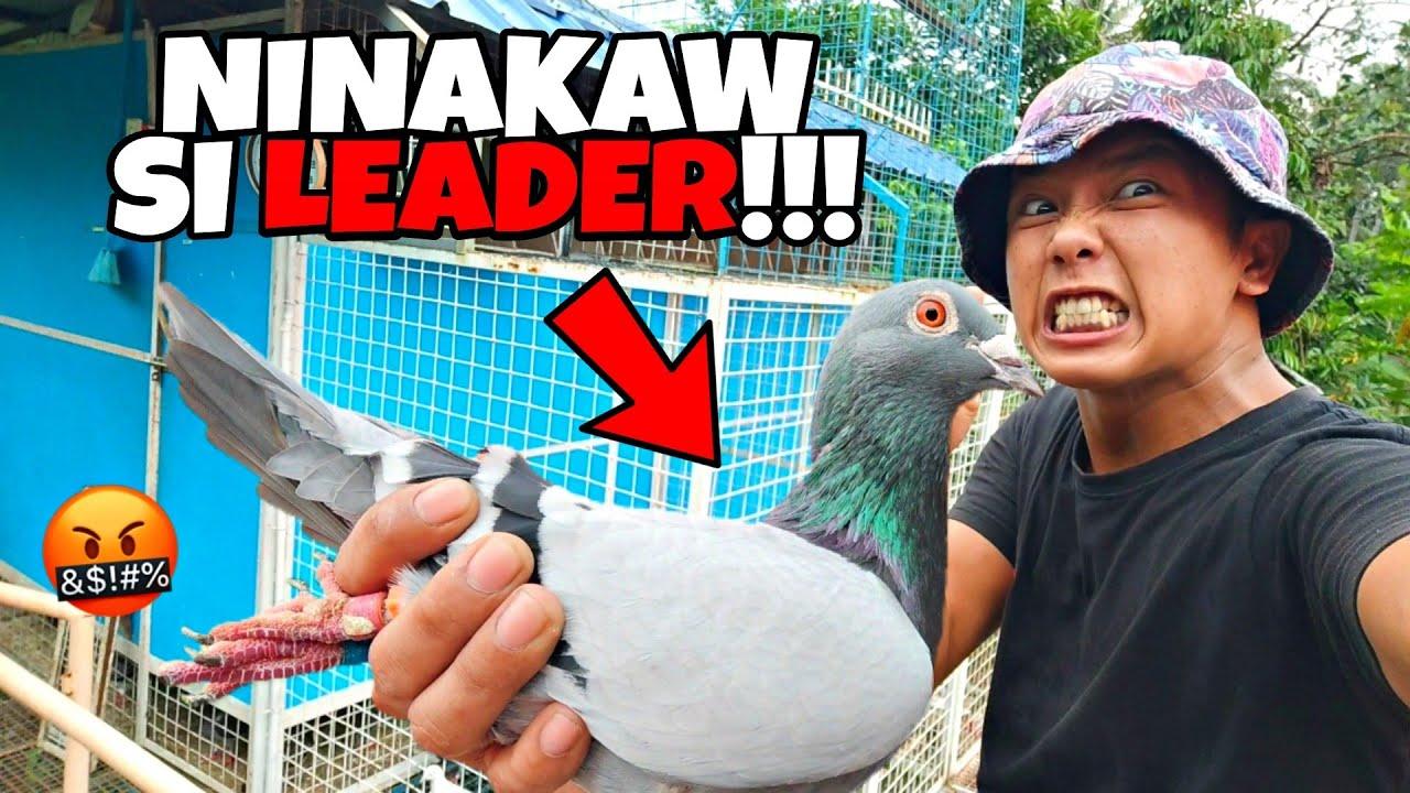 Download NINAKAW YUNG PINAKAMAHAL (WORTH 120,000K) NA KALAPATI KO SA LOFT!!! JUSKO NAMAN 😡