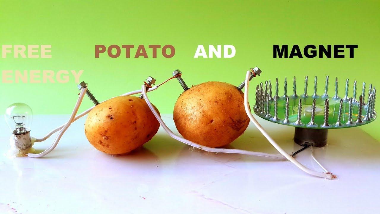 Free Energy Light Bulbs - using Magnet and Potato - YouTube