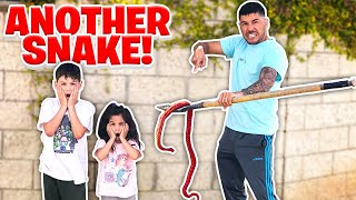 WE CAN'T BELIEVE WE FOUND ANOTHER SNAKE BY OUR HOUSE!!! **SHOCKING**