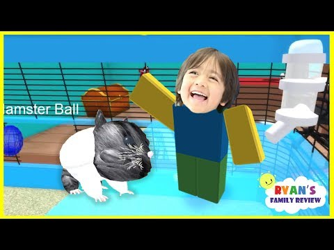 Ryan and Daddy Game Night! Let's Play Roblox Hamster Simulator with Ryan's Family Review!