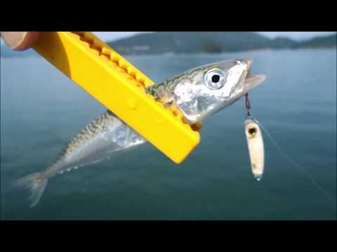 海釣り公園で小物のルアー釣りマイクロメタルジグ編