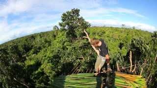 Индонезия. Экспедиция на остров Новая Гвинея. 3 серия (1080p HD)   Мир Наизнанку - 5 сезон