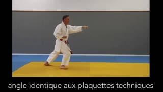 SOSHUN - Tai Jitsu Kata söshun